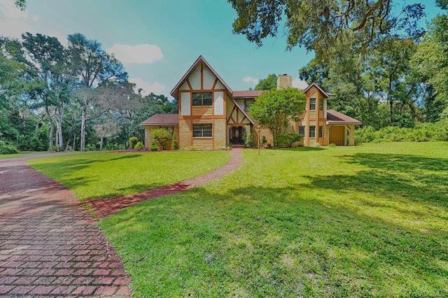 8811 E Hampton Point Road, Inverness, FL 34450 (MLS #775761) :: Plantation Realty Inc.