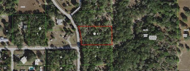 10589 N Rousseau Drive, Dunnellon, FL 34433 (MLS #775794) :: Plantation Realty Inc.