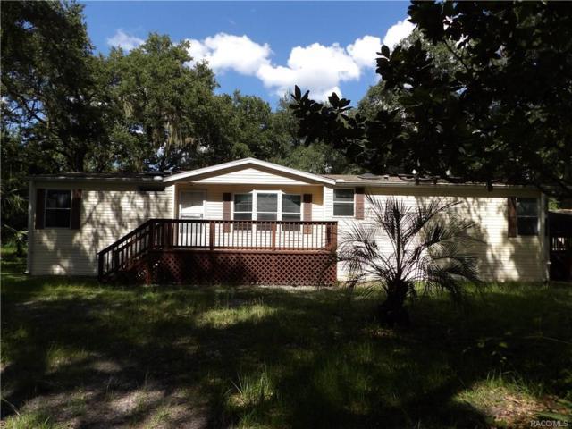 6354 County Road 248A, Lake Panasoffkee, FL 33538 (MLS #775804) :: Plantation Realty Inc.