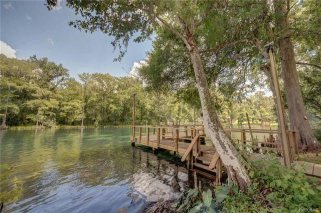18521 SW 108th Place, Dunnellon, FL 34432 (MLS #775811) :: Plantation Realty Inc.