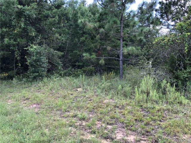 5342 N Redwood Avenue, Hernando, FL 34442 (MLS #775850) :: Plantation Realty Inc.