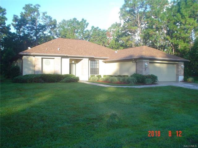 3 Shamrock Court, Homosassa, FL 34446 (MLS #775909) :: Plantation Realty Inc.