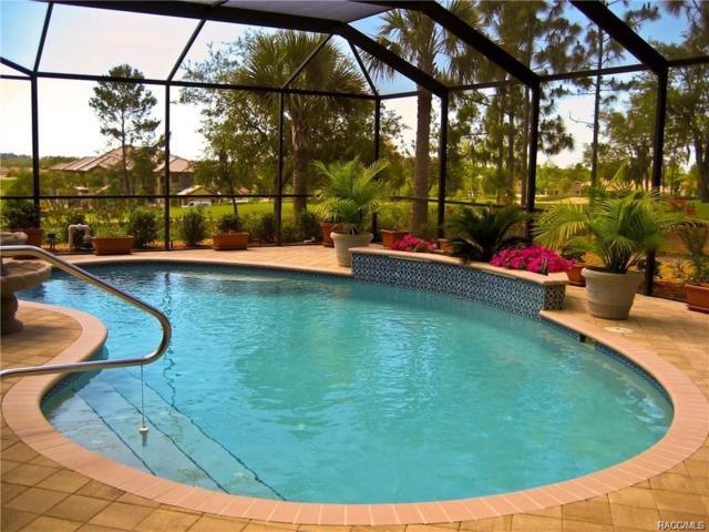 1998 N Ramblewood Point, Hernando, FL 34442 (MLS #775910) :: Plantation Realty Inc.