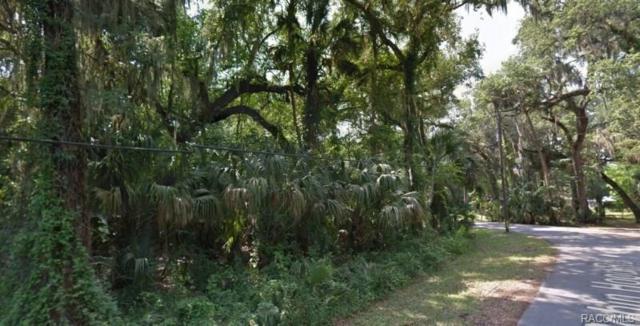 540 N Robin Hood Road, Inverness, FL 34450 (MLS #775911) :: Plantation Realty Inc.