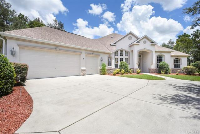 5 Anton Court, Homosassa, FL 34446 (MLS #775915) :: Plantation Realty Inc.