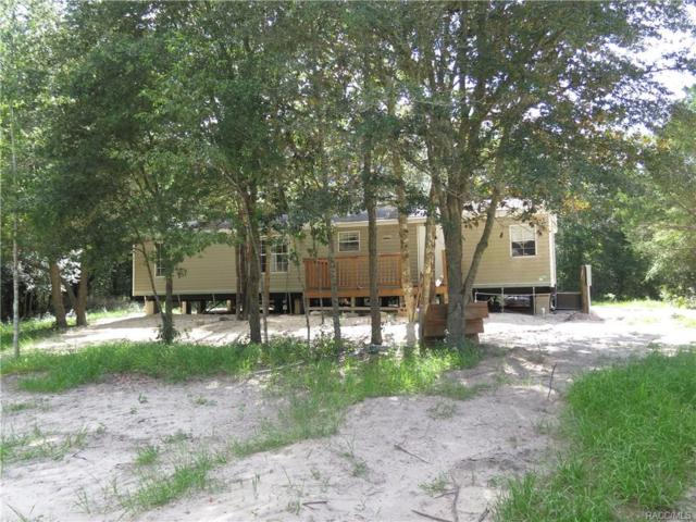 6705 N Gold Leaf Point, Dunnellon, FL 34433 (MLS #775929) :: Plantation Realty Inc.