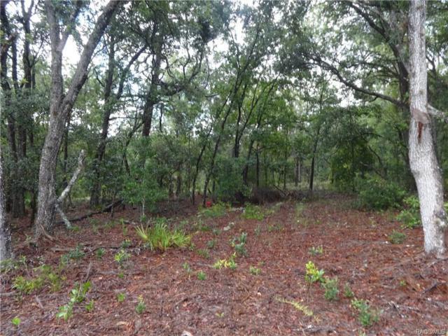 2579 W Pine Ridge Boulevard, Beverly Hills, FL 34465 (MLS #775934) :: Plantation Realty Inc.