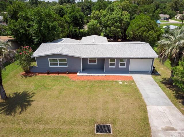 14 N Wadsworth Avenue, Beverly Hills, FL 34465 (MLS #775942) :: Plantation Realty Inc.
