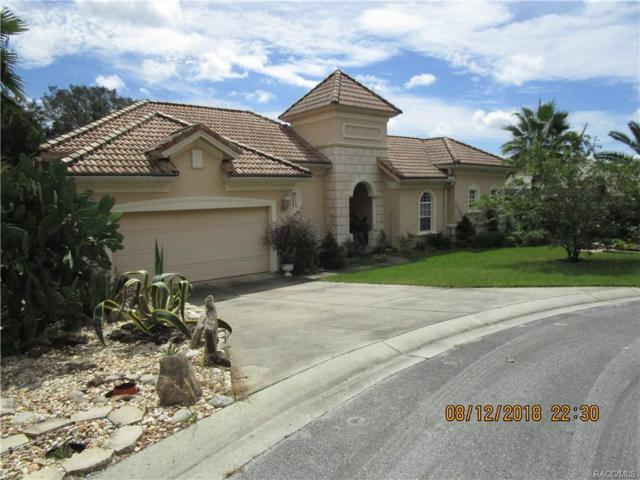 1625 N Sand Wedge Point, Hernando, FL 34442 (MLS #775943) :: Plantation Realty Inc.