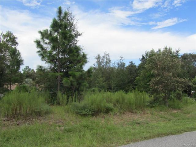 1007 N Lafayette Way, Inverness, FL 34453 (MLS #775965) :: Plantation Realty Inc.