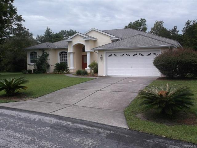 13 Pawpaw Court S, Homosassa, FL 34446 (MLS #775977) :: Plantation Realty Inc.