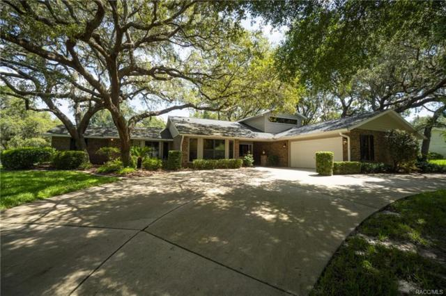 9905 E Regency Row, Inverness, FL 34450 (MLS #776129) :: Plantation Realty Inc.