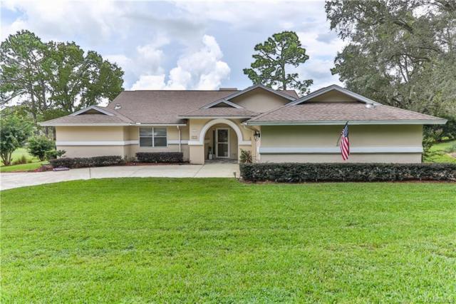 375 E Liberty Street, Hernando, FL 34442 (MLS #776205) :: Plantation Realty Inc.