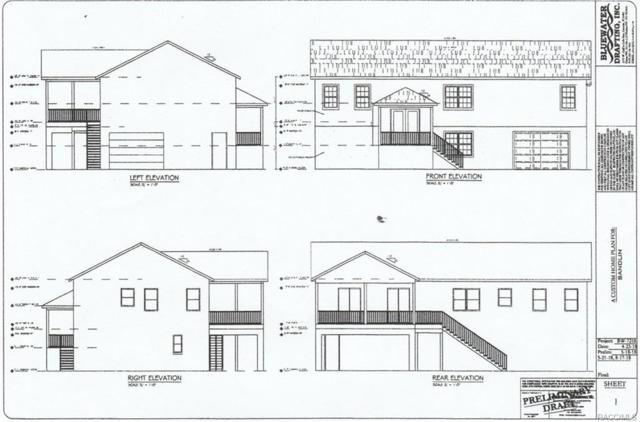 g NW 18th Court, Crystal River, FL 34428 (MLS #776219) :: Plantation Realty Inc.