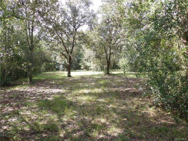 2502 E Mars Street, Inverness, FL 34453 (MLS #776351) :: Plantation Realty Inc.