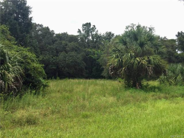 12160 E Gulf To Lake Highway, Inverness, FL 34450 (MLS #776377) :: Plantation Realty Inc.