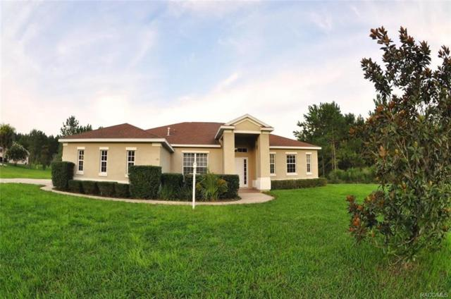 85 S Kensington Avenue, Lecanto, FL 34461 (MLS #776418) :: Plantation Realty Inc.