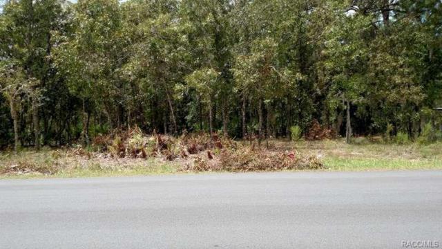 1684 S Sioux Road, Homosassa, FL 34448 (MLS #776524) :: Plantation Realty Inc.