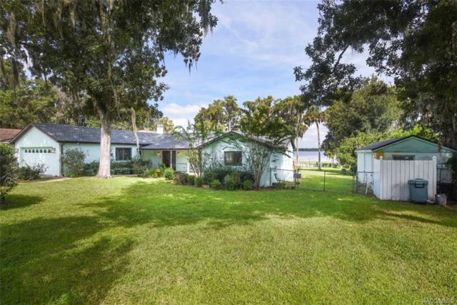 4431 E Sparkle Lane, Hernando, FL 34442 (MLS #776533) :: Plantation Realty Inc.