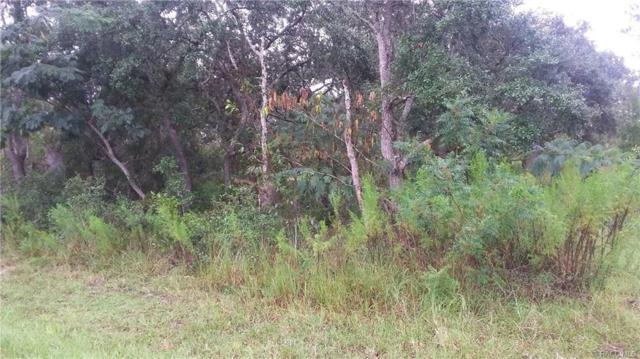 6279 S Pleasant Avenue, Homosassa, FL 34446 (MLS #776561) :: Plantation Realty Inc.