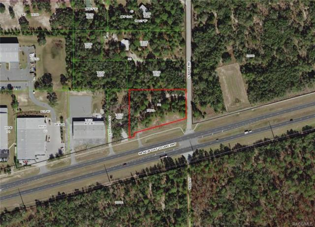 1055 W Gulf To Lake Highway, Lecanto, FL 34461 (MLS #776571) :: Plantation Realty Inc.