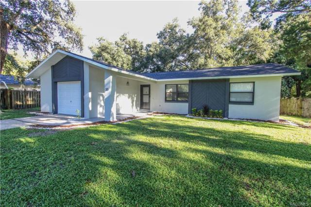 20 S Hibiscus Avenue, Crystal River, FL 34429 (MLS #776636) :: Plantation Realty Inc.