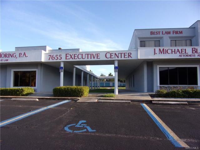 7655 W Gulf To Lake Highway, Crystal River, FL 34429 (MLS #776637) :: Plantation Realty Inc.