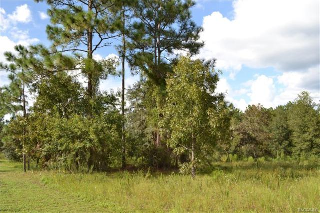 5565 W Dunnellon Road, Dunnellon, FL 34433 (MLS #776650) :: Plantation Realty Inc.