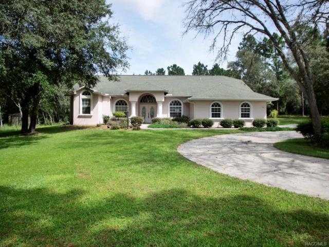 141 E Shawna Court, Hernando, FL 34442 (MLS #776709) :: Plantation Realty Inc.