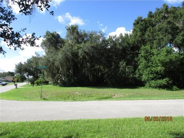3034 S Franklin Terrace, Inverness, FL 34450 (MLS #776722) :: Plantation Realty Inc.