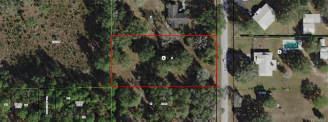 10516 N Burgundy Point, Dunnellon, FL 34433 (MLS #776751) :: Plantation Realty Inc.