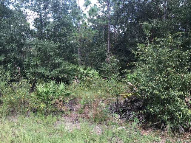 3175 N Appaloosa Point, Crystal River, FL 34429 (MLS #776762) :: Plantation Realty Inc.