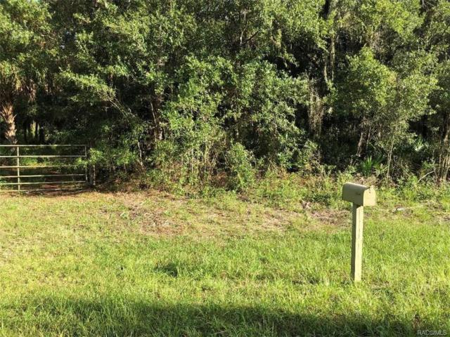 10046 W Dunnellon Road, Crystal River, FL 34428 (MLS #776766) :: Plantation Realty Inc.