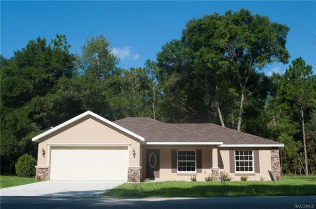 3738 E Lake Todd Drive, Hernando, FL 34442 (MLS #776767) :: Plantation Realty Inc.