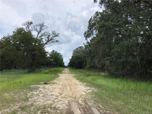 6559 S Spotted Sandpiper Point, Lecanto, FL 34461 (MLS #776772) :: Plantation Realty Inc.