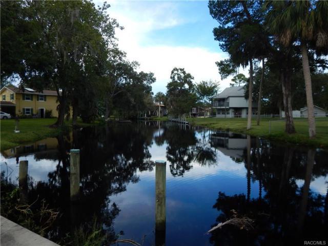 16595 W River Road, Inglis, FL 34449 (MLS #776819) :: Plantation Realty Inc.