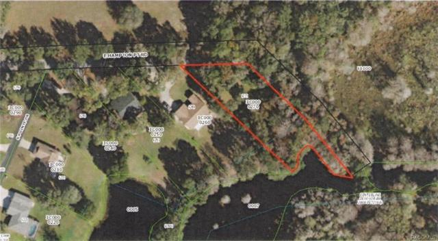 9222 E Hampton Point Road, Inverness, FL 34450 (MLS #776828) :: Plantation Realty Inc.