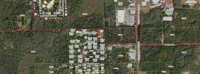 15 S Camellia Avenue, Crystal River, FL 34429 (MLS #776831) :: Plantation Realty Inc.