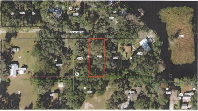 8974 E Marvin Street, Floral City, FL 34436 (MLS #776871) :: Plantation Realty Inc.