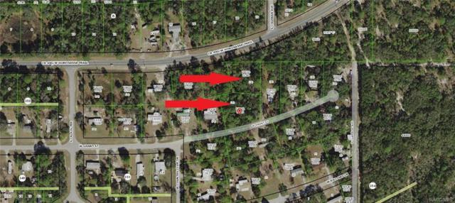6093 W Grant Street, Homosassa, FL 34448 (MLS #776889) :: Plantation Realty Inc.