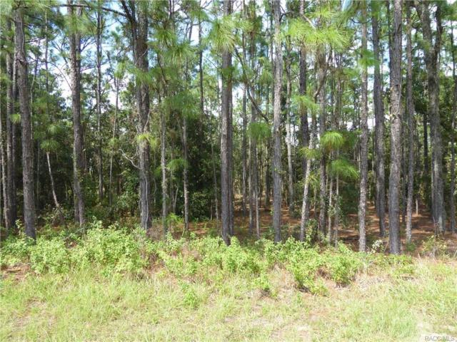 2489 E Celina Street, Inverness, FL 34453 (MLS #776901) :: Plantation Realty Inc.