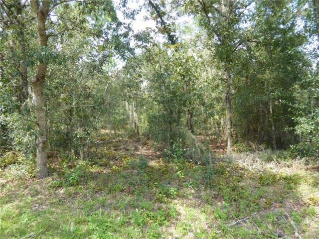 2484 E Hampshire Street, Inverness, FL 34453 (MLS #776904) :: Plantation Realty Inc.