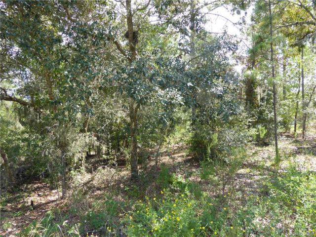 2547 E Hampshire Street, Inverness, FL 34453 (MLS #776905) :: Plantation Realty Inc.