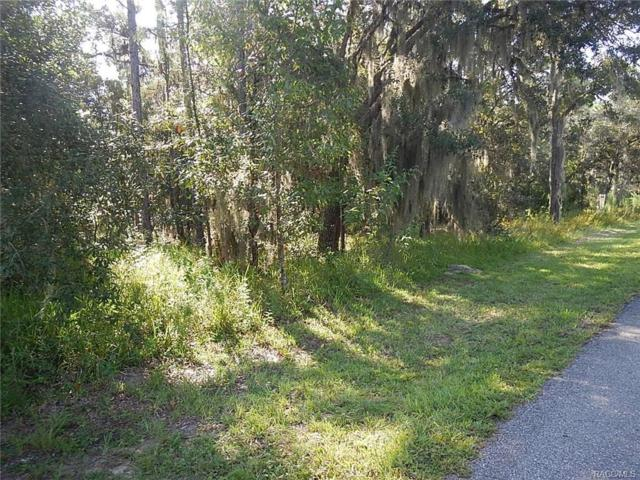 461 N Seton Avenue, Lecanto, FL 34461 (MLS #776912) :: Plantation Realty Inc.