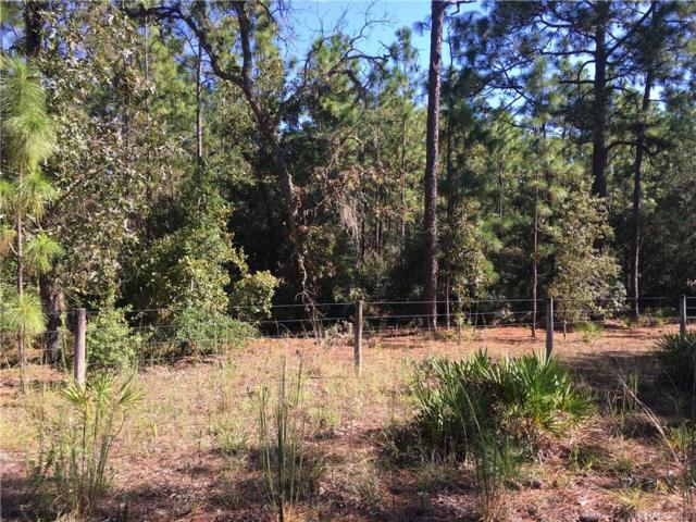 6101 N Dry Branch Point, Dunnellon, FL 34433 (MLS #776915) :: Plantation Realty Inc.