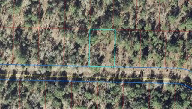 TBD Lot 17 NE 12th Lane, Williston, FL 32696 (MLS #776931) :: Pristine Properties