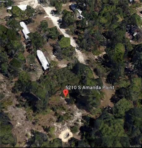 5210 S Amanda Point, Homosassa, FL 34446 (MLS #776968) :: Plantation Realty Inc.
