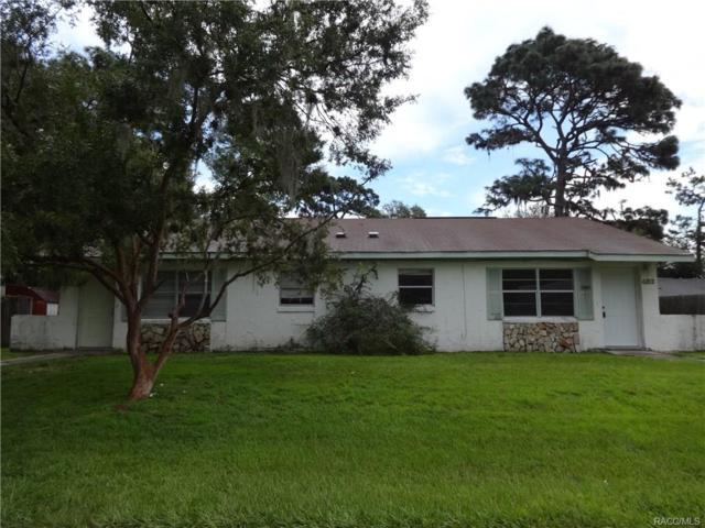 485 N Briarcreek Point, Crystal River, FL 34429 (MLS #776970) :: Plantation Realty Inc.
