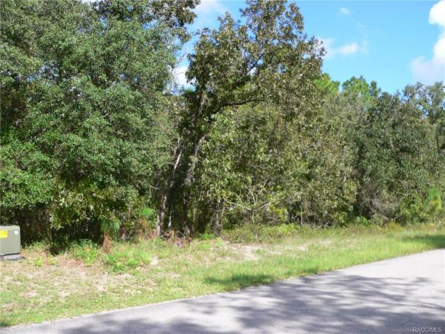 5 Bells Of Ireland Court, Homosassa, FL 34446 (MLS #776985) :: Plantation Realty Inc.