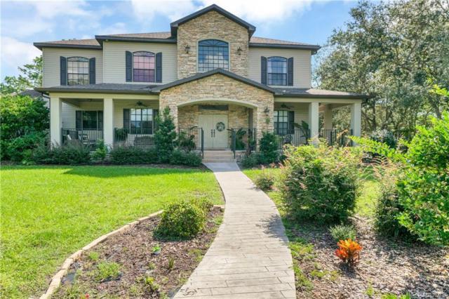 10484 Gypsy Avenue, Weeki Wachee, FL 34613 (MLS #777003) :: Plantation Realty Inc.